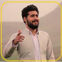 محمد پرویزی